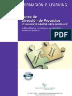 direccion proyectos