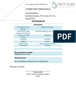 bacteriologia2 reporte 9