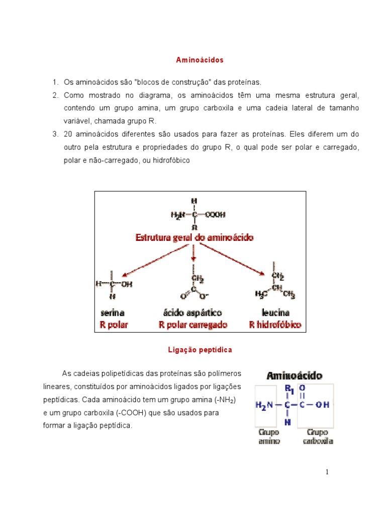 Biomolã Culaskaren