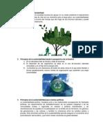 Definición de Sustentabilidad