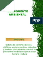 7 aspectos ambientales