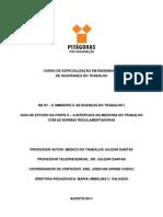 Guia de Estudo 1 Parte II a Interface Da Medicina Do Trabalho Com as Normas Regulamentadoras
