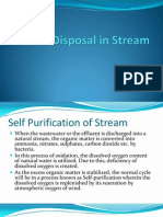 Waste Disposal in Stream