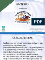 Micro Bacterias