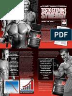 2Tx - Testosterone Synergy