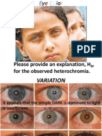 Eye Color Power Point - Genetics Exam 1