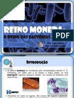 bacterias1