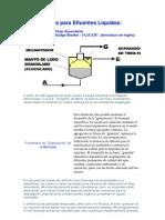 Biodigestores para Efluentes Líquidos