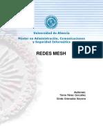 PFM_mesh