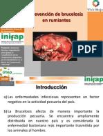 3.Diapositivas Para Product Ores