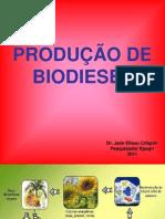 7Treinamento 20na 20produ C3 A7 C3 A3o 20de Biodiesel