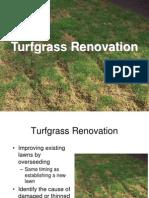 10 Turfgrass Renovation