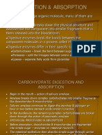 Digestion & Absorption