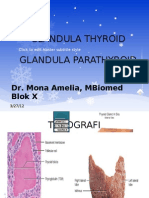 Glandula Thyroid