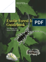 Exotic Forest Insect Guidebook