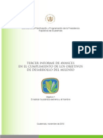 III Informe ODM, Guatemala 2010