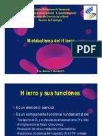 Metabolismo Del Hierro (1)