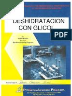 Desidratacion Con Glicol
