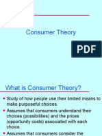 A Consumer Theory