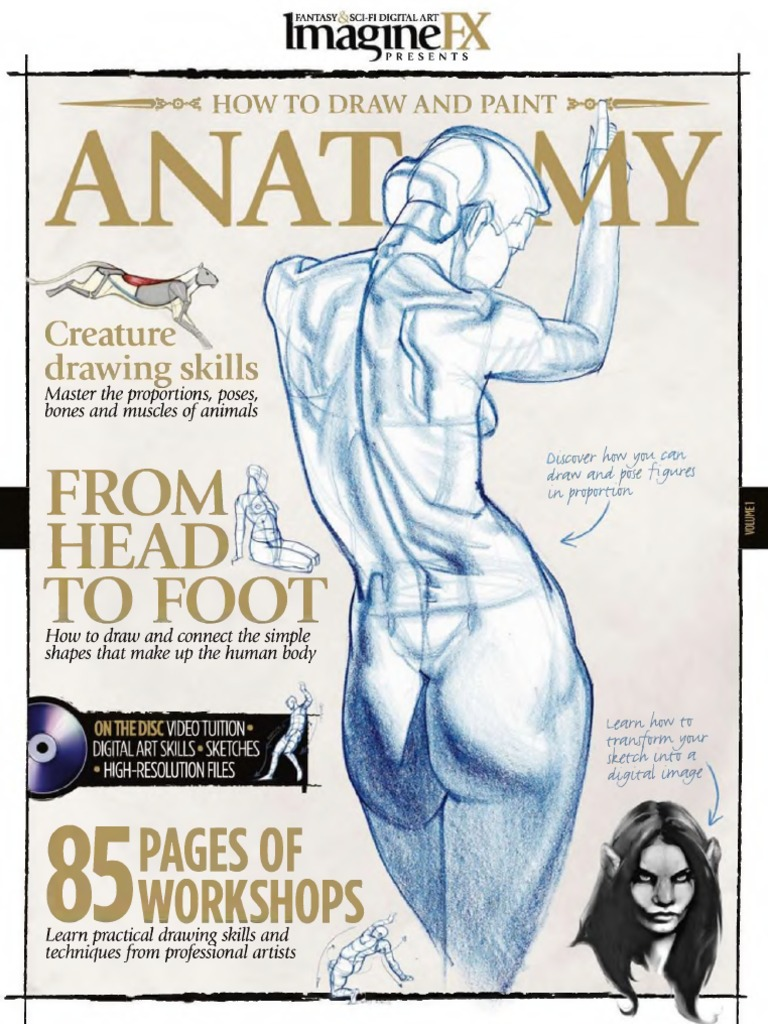 Imaginefx How to Draw and Paint Anatomy 2010 | Neck | Shoulder