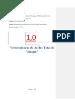 3º Relatorio determinação da acidez do vinagredjanine