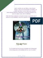 Psiyoga-Holos
