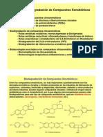 PCR TECNICAS