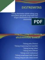 EKSTREMITAS