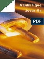 Estudo do livro A Bíblia que Jesus lia