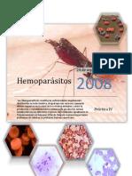 15488217-Hemoparasitos-microbiologia