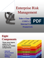 Enterprise Risk Mgmt