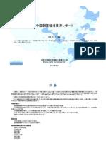 中国製薬機械業界レポート - Sample Pages