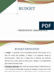 Budget 2010 Ppt @ Bec Doms Bagalkot Mba