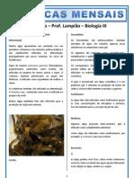 Biologia III Lampiao
