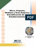 microempresas y medianas