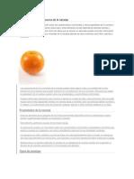 Información general acerca de la naranja