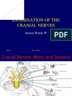 Examination of the Cranial Nerves