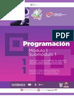 Guía formativa. PROGRAMACION 11. CECyTEH 2012 Gobierno Hidalgo