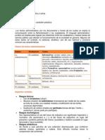 Guía teórica Unidad IV -CEL II