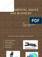 Environmental Issues and Business
