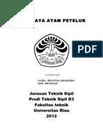 USAHAAYAM-PETELUR