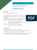 PPW bei Kohlenhydrat