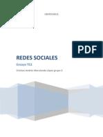 Ensayo Redes Sociales en Internet TE3