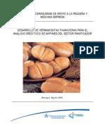Informe Final Herramientas Para El Analisis Crediticio SP 15-08-5