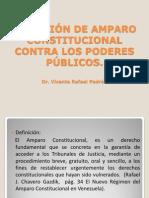 LA ACCIÓN DE AMPARO CONSTITUCIONAL CONTRA LOS PODERES