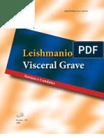 Manual Lv Grave Nc