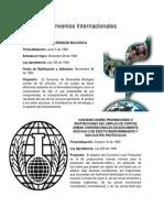 Convenios Internacionales (ONASIS)