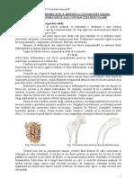 Biomecanica-contractia-musculara-2009