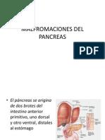 Malfromaciones Del Pancreas