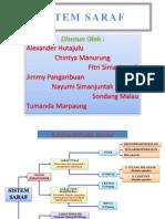 Presentasi Sistem Saraf